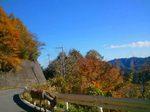 2012-11-18 10.36.23.jpg