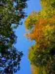 2012-10-26 08.09.36.jpg