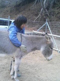 image/akiyamakoubou-2005-12-30T22:25:18-1.JPG