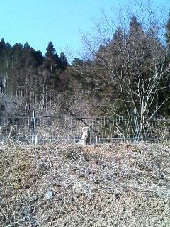 image/akiyamakoubou-2006-02-15T14:47:10-1.JPG