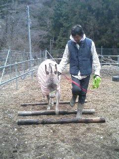 image/akiyamakoubou-2006-02-24T12:03:31-1.JPG
