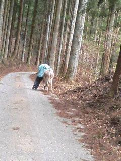 image/akiyamakoubou-2006-04-06T20:17:54-1.JPG