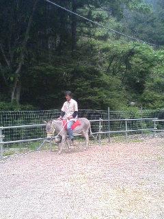 image/akiyamakoubou-2006-06-03T20:28:28-1.JPG