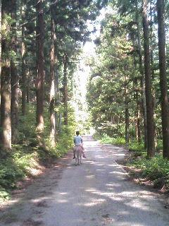 image/akiyamakoubou-2006-06-29T18:43:28-1.JPG