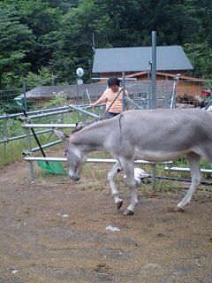 image/akiyamakoubou-2006-07-16T21:36:06-1.jpg
