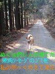 070304_1449~0001-0001.jpg