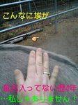 070325_1630~0001-0001-0001.jpg